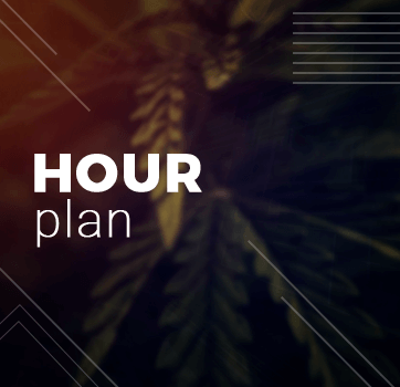 Hour Plan - Consulting - Grow