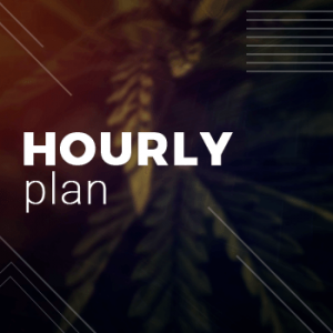 Hourly Plan - Consulting - Grow